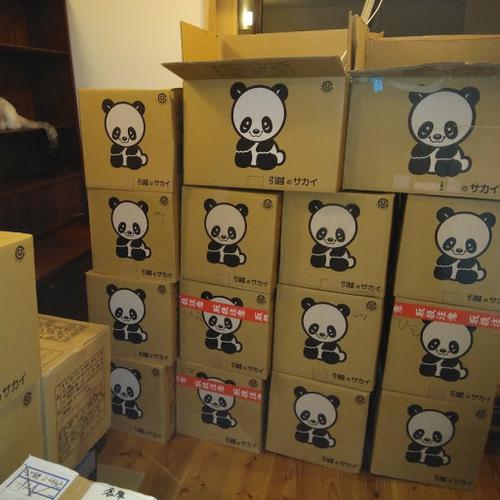 panda2.jpg